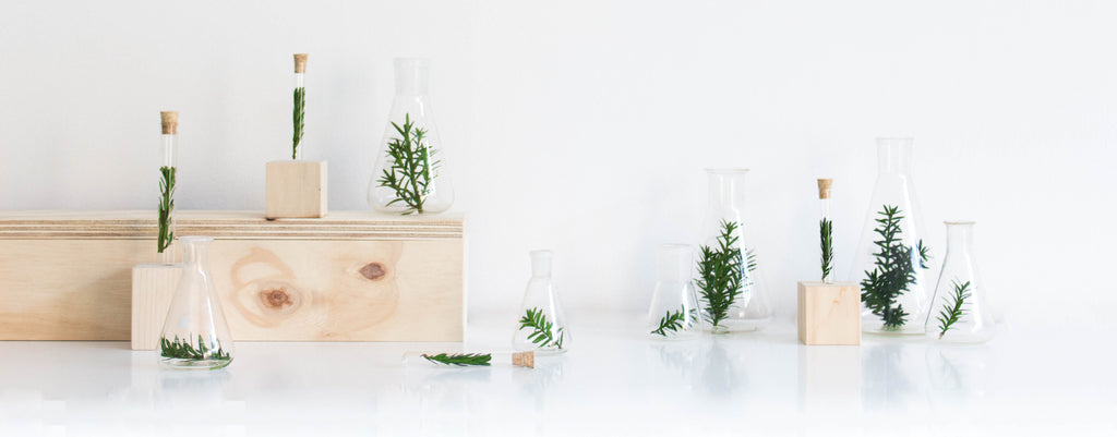 DIY // tiny house christmas tree alternative