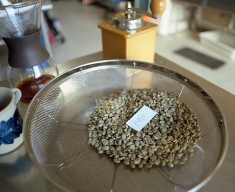 Sorting + Washing Beans by Hand