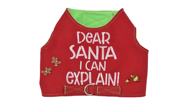 Dear Santa / Elf Surveillance Harnesses