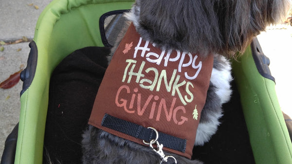 Happy Thanksgiving / Gobble Harnesses