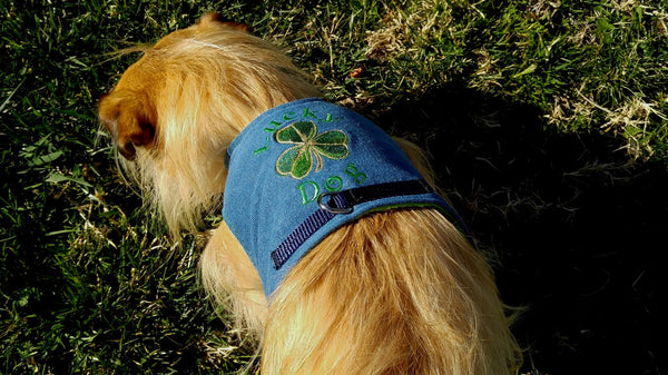 Lucky Dog Harness