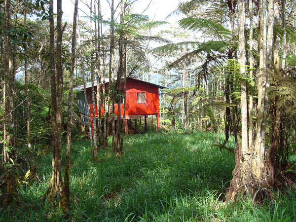 Shack in the Tarrazu highlands Costa Rica