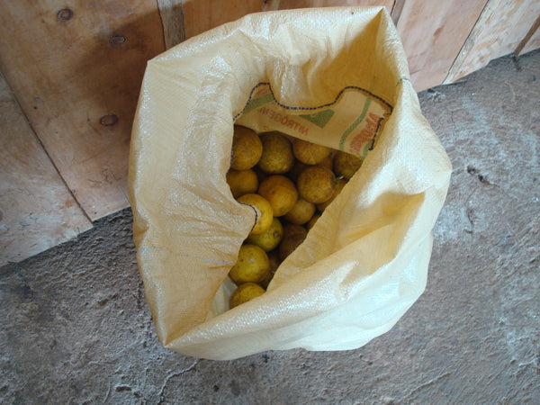 sweet limes in the tarrazu mountains