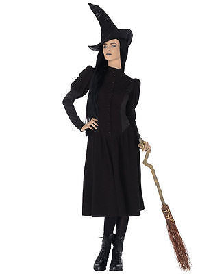 Wicked Elphaba Wicked Witch Of The West Adult Costume - Oz Costume - Large