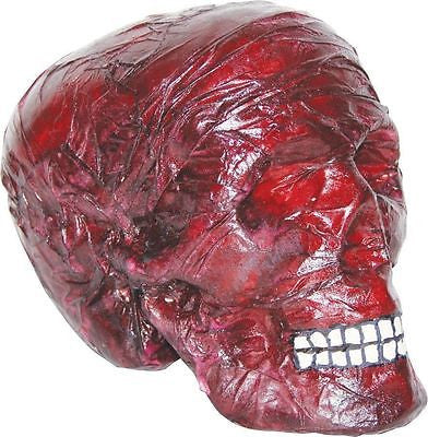 Burnt Skull Halloween Haunted House Prop