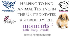 Helping to End Cosmetic Testing in the USA