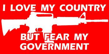 """I Love My Country But Fear My Government"" EZ-Peel Vinyl Bumper Sticker. Size 3¾""x7½""."