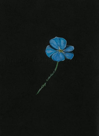 382 Open Edition Giclée Print - 'The Keyworker forget-me-not'