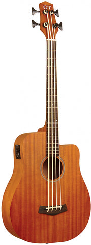 "Gold Tone 25"" acoustic-electric microbass with mahogany top and bag included"