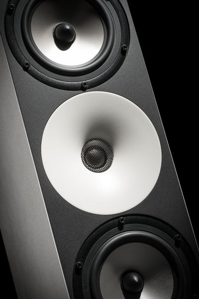 Amphion Two18 Studio Monitor