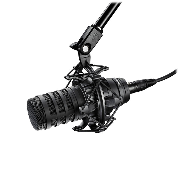 BP40 Large-Diaphragm Dynamic Broadcast Microphone