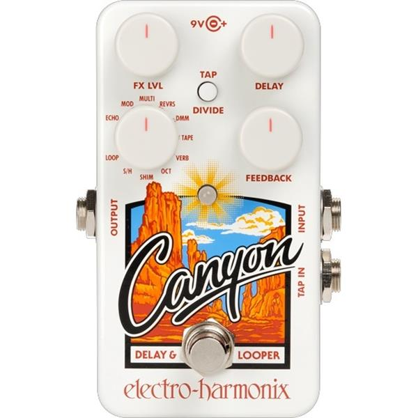 Canyon Delay and Looper Pedal