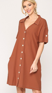 Clay V-Neck Shift Dress with Pockets