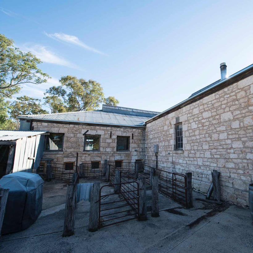 Bellwether- Wines-cellar-door-camping-grounds