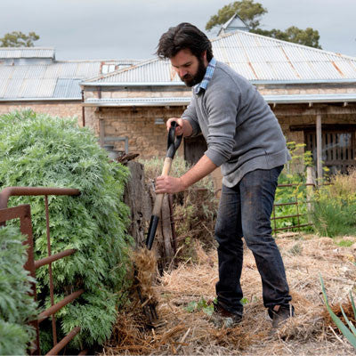Bellwether-wines-Produce-Garden-veggie-garden