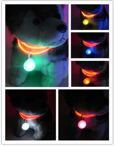 LED Light up Dog Pet Night Safety Bright Light