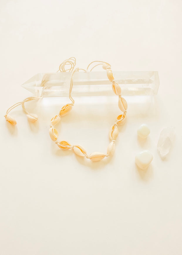 Cowrie Shell Choker Cream Necklace