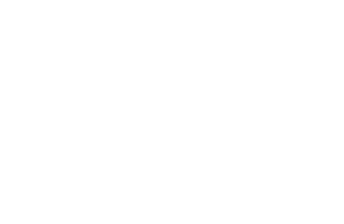 Wild Mountain Apparel