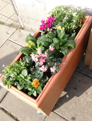 Healthlink Flower Box 1