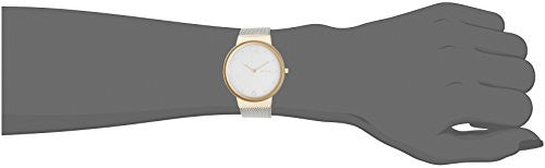 Skagen Women's SKW2381 Freja Stainless Steel Mesh Watch