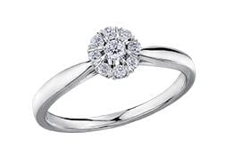 10 Karat White Gold Canadian Diamond Ring