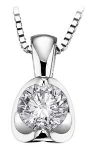 14 Karat White Gold Canadian Diamond Pendant