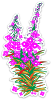 Fireweed Decal (small) - Crab Terror Island
