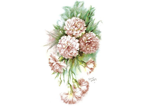 1041 Carnations Ceramic Decals