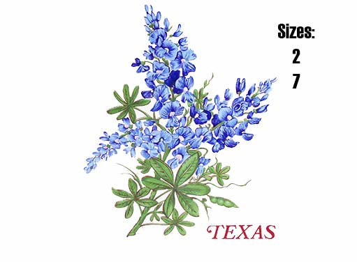 Texas Blue Bonnet Flower Item # 10740