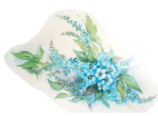 Blue Forget Me Not Flowers  11914 B