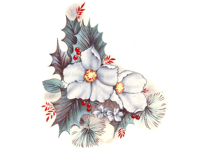 1310 Christmas White Poinsettia