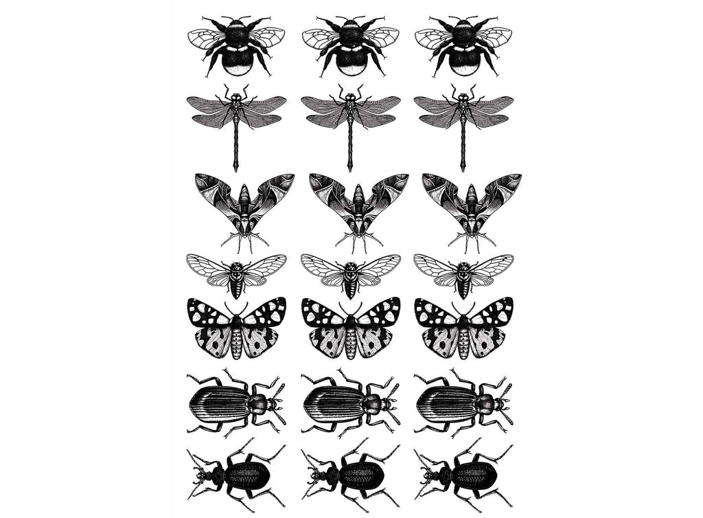 "Insect Mania 21 pcs on 5"" X 3-1/2"" card Black #1143 Fused Glass Decals"