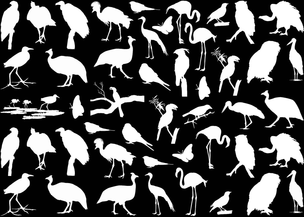 "African Birds 47 pcs 1/2"" to 1-1/4"" on 5"" X 7"" Card  White #1196 Fused Glass Decals"