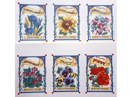 Flower Seed Packets  2086