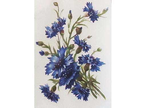 Cornflower Blue Flowers Item # 2368