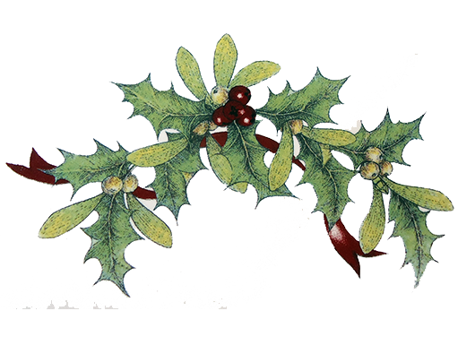Christmas Holly Png.Christmas Holly Sprig 42323 C