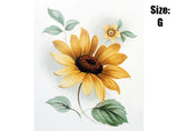 Black Eyed Susan Yellow Daisy Flowers 4934