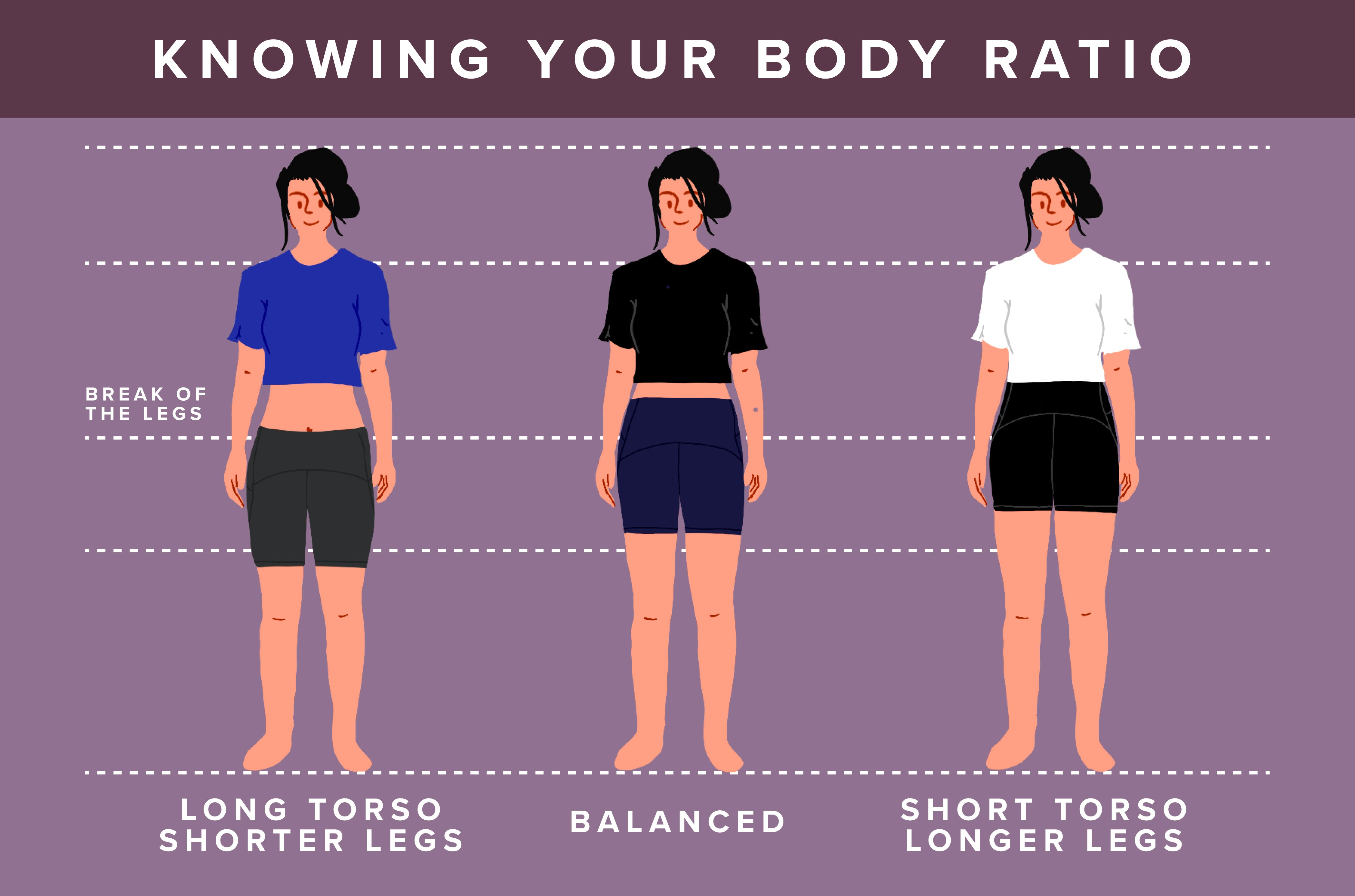 Knowing Your Body Ratio