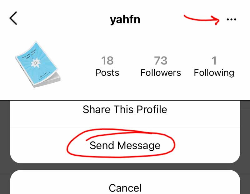 Screenshots depict how to send a DM to a private account on Instagram