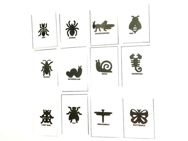Silhouette flashcards PDF with words: BUGS