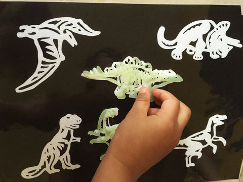 Dinosaur matching activity, glow in the dark dinos!
