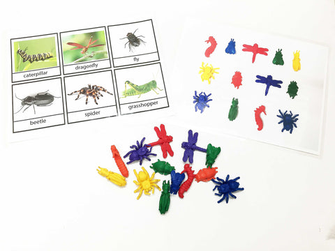 Montessori bug counters matching activity