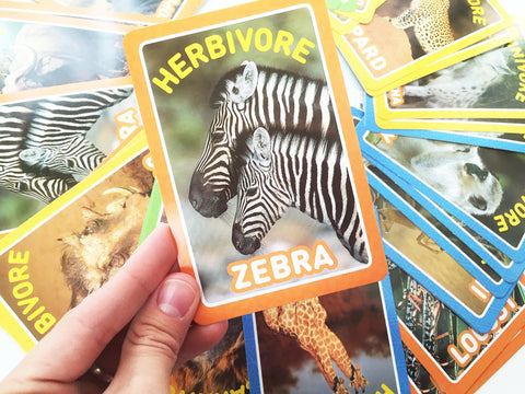 Food chain card game from National Geographic