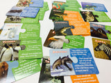 Animal facts puzzle matching card game from National Geographic