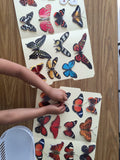 Butterflies matching folder activity