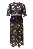 Rent: Seed Heritage Lace Peplum Dress