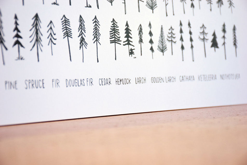 The Pine Family Print - Langsom