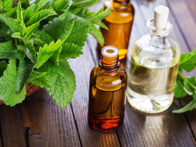 Aromatherapy Focus - Peppermint Oil