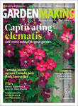 Captivating Clematis (Issue 6)