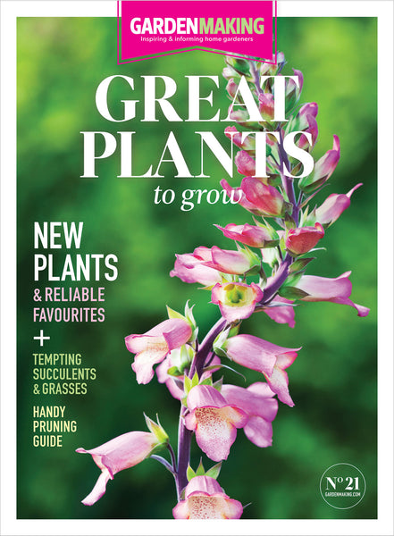 Great Plants to Grow (Issue 21)